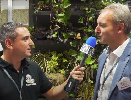 Végétalisation TECHNIQUE des toits et façade – BICHON TV